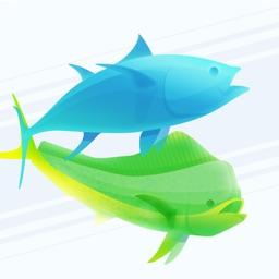 Pro Angler - Fishing Reports