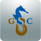 Grounding Profile by GSC icon