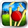 Ahmed Malik - Cricket Run Out 3D artwork