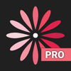Calendário WomanLog Pro
