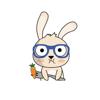 avneet sandhu - Spexy Rabbit  artwork