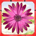 有趣的花园 - 匹配夏天花游戏 - 免费版 icon
