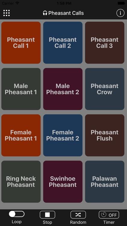 Pheasant Calls