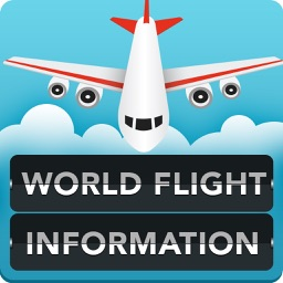 World Flight Information