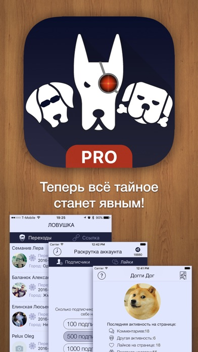 Статистика из ВКонтакте Скриншоты3
