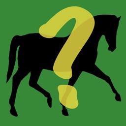 Horse Quiz