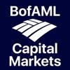 BofAML Capital Markets