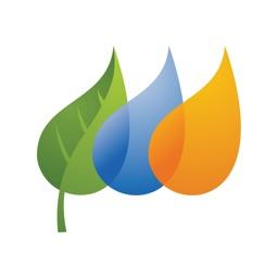ScottishPower - Your Energy