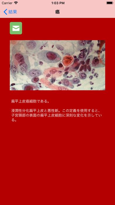 Pap Testのおすすめ画像4