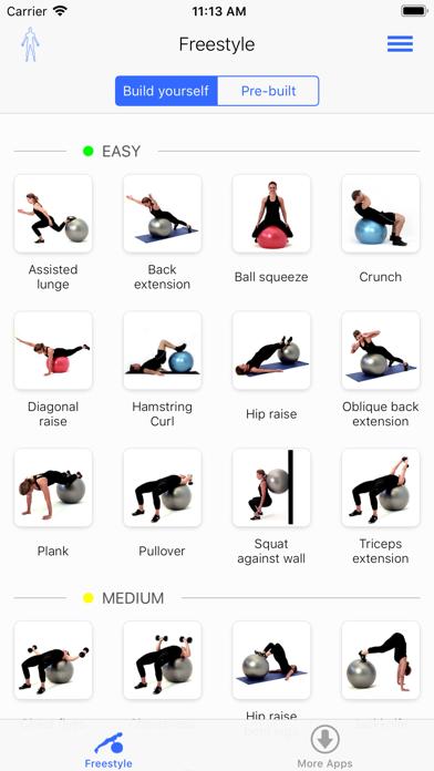 Virtual Trainer Gym Ball screenshot two