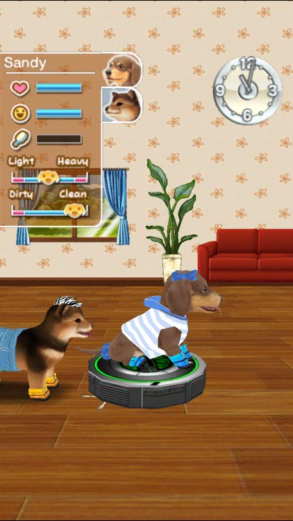 My Dog My Room Premium screenshot-4