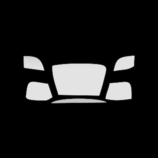 Muscle Car Fan