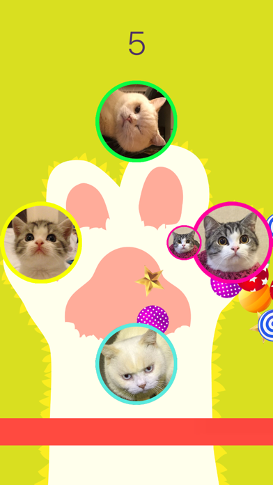 CopyCat - Cute Cats (Marbles and Sesame) Matching screenshot two
