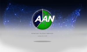 Americas Auction Network