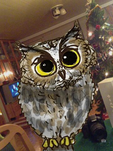 Rotate the Owl - náhled