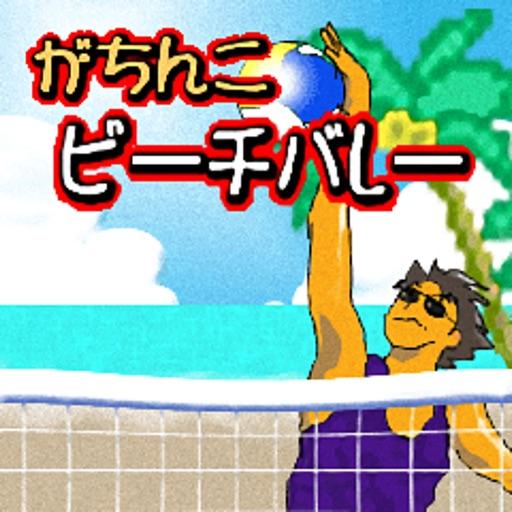 がちんこビーチバレー