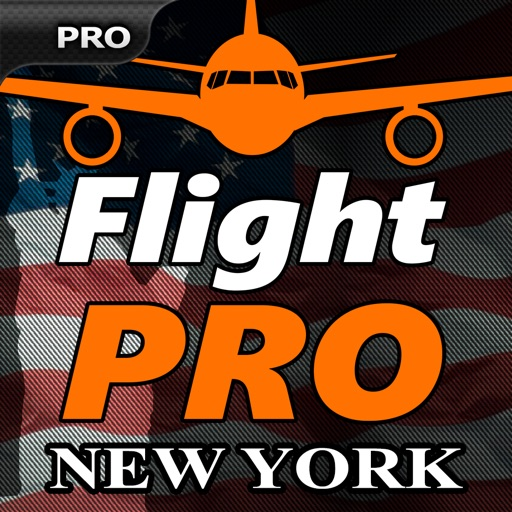 Pro Flight Simulator New York