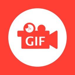 GIF Camera!