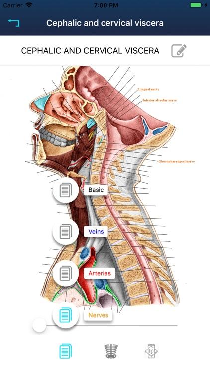 RF Anatomy screenshot-3
