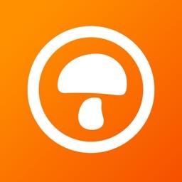 蘑菇租房-找合租整租公寓房源软件