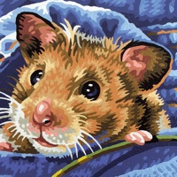 Codes for Hamster Puzzles Hack