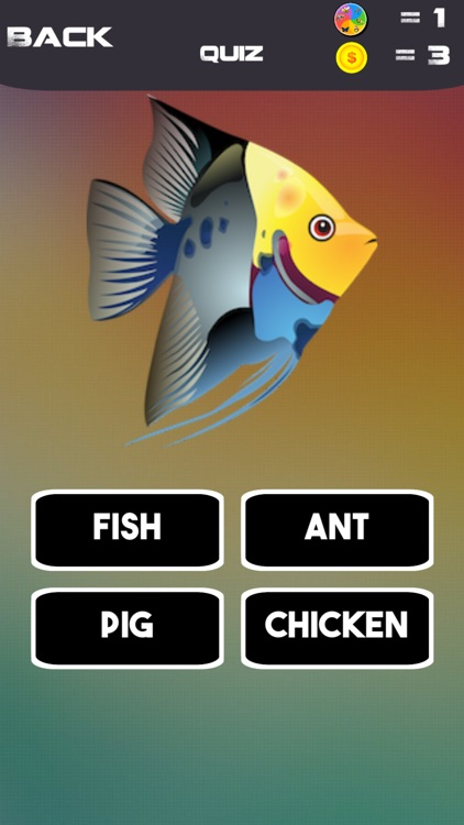 THE BEST QUIZ-fun for all ages screenshot-6
