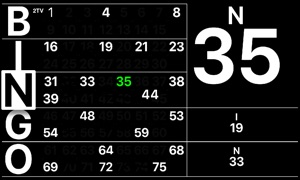 Bingo 2TV