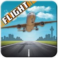 Codes for Pilot Airplane Flight 3D Hack