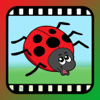 Video Touch - Bugs & Insects