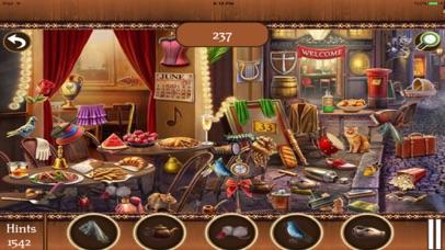 Hidden Objects:Big Home Mania screenshot three