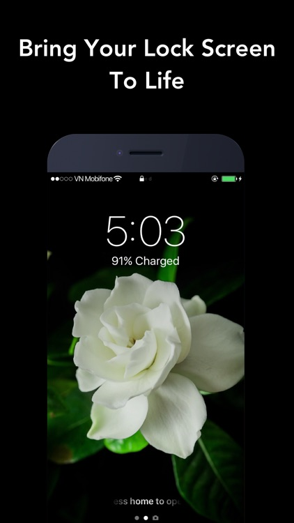 Live Wallpapers for iPhone.