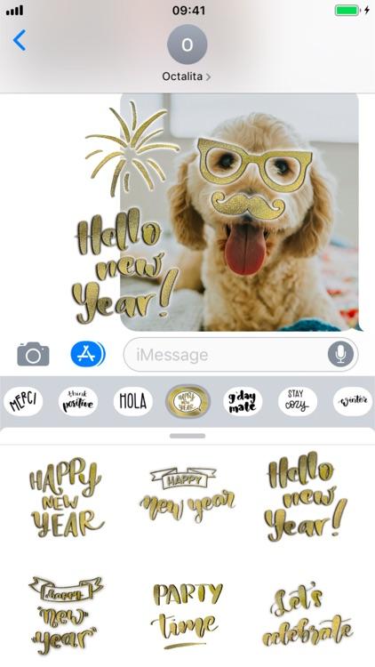 New Year Calligraphy screenshot-5