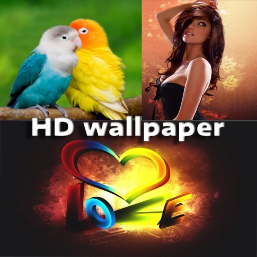 HD Wallpapers 4K
