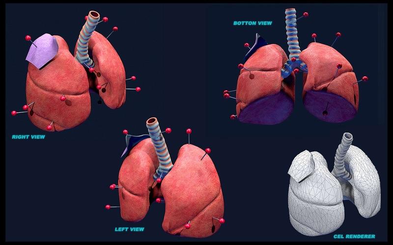 LungsProAnimated скриншот программы 1