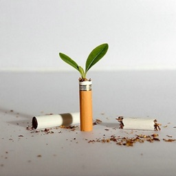 Quit Smoking by Music
