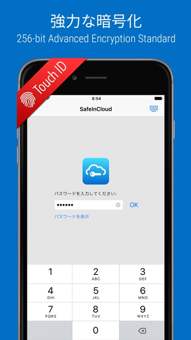 SafeInCloud Pro screenshot1