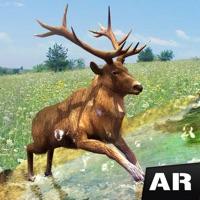 Codes for AR Safari - Forest Adventure Hack