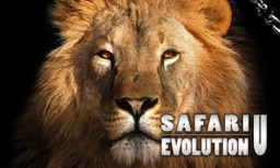 Safari: Evolution-U TV