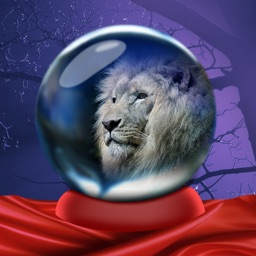 What Animal Was I In My Past Life - Crystal Ball