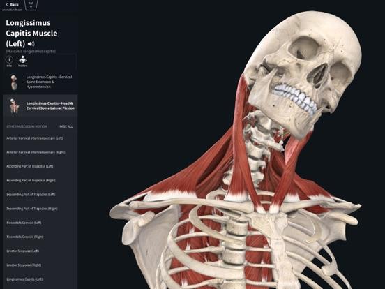 Complete Anatomy 2019