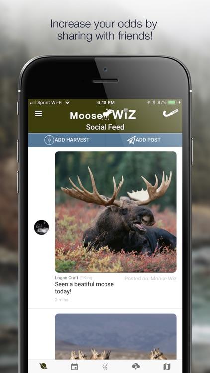 Moose Wiz: Hunting Predictions