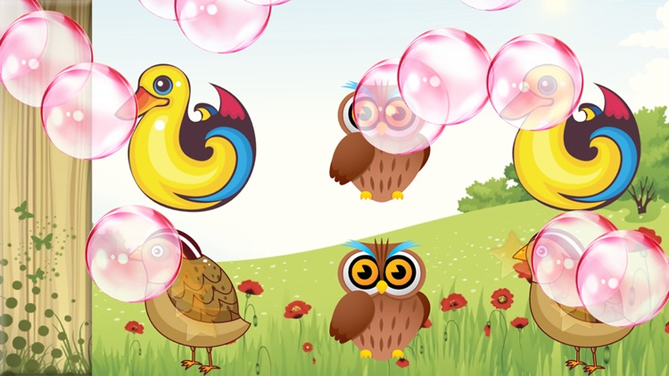 Birds Match Games for Toddlers screenshot-3