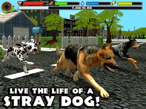 Stray Dog Simulator на iPad