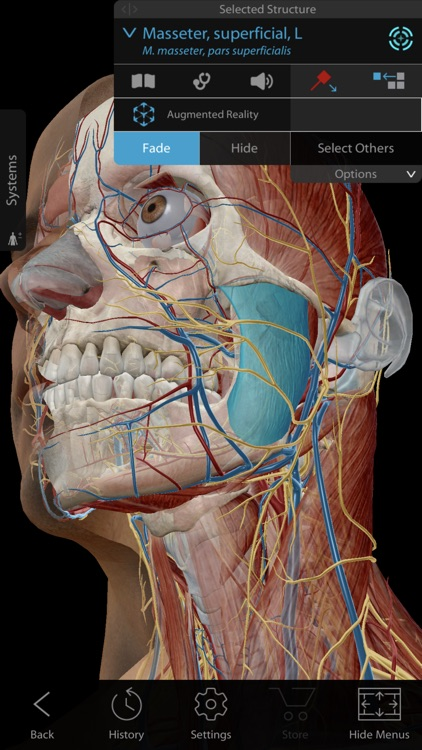 Youll Never Touch Your Anatomy Textbook Again After Trying These Apps