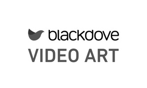 Blackdove Video Art