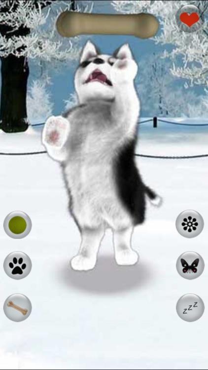 Talking Dog Virtual Pet Husky screenshot-3