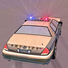 Activities of Extreme Police Cars Simulator