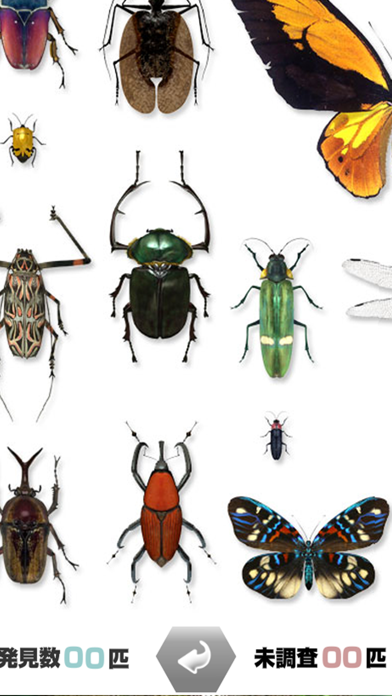 世界の昆虫採集のおすすめ画像2
