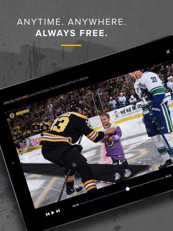 Bruins DeskSite screenshot-4