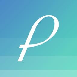 Patterner - Simple Budget
